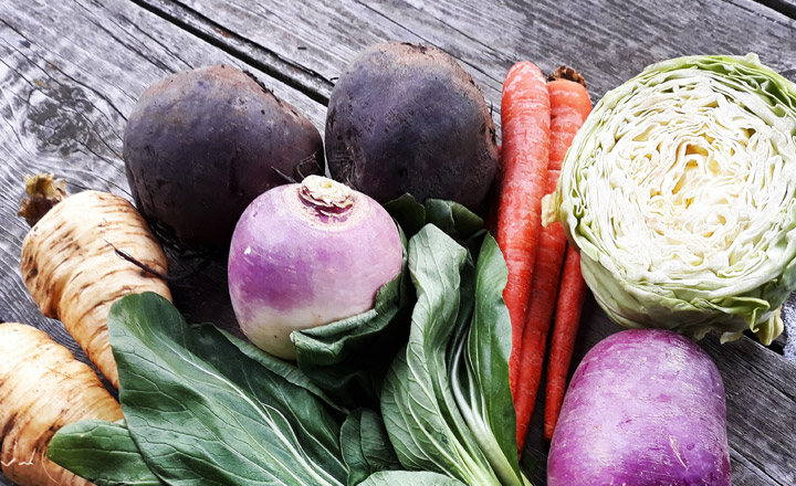 Variety of vegetables on a wooden table